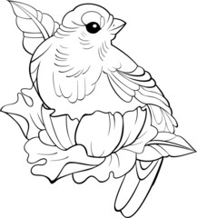 vector bird tattoo