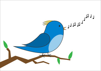blue and yellow bird on a branch singing vector