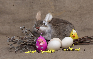 Happy Easter. Easter rabbit and chicken. Photo.