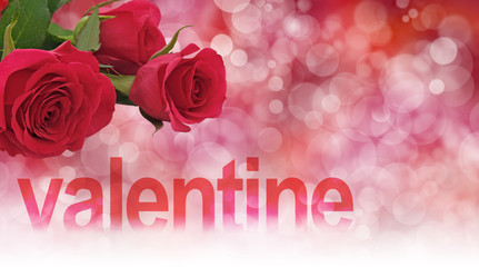 Red Roses for your Valentine Banner