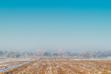 Frozen field and blue sky