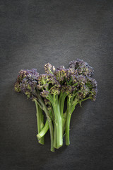 Purple Sprouting Broccoli on Dark Background
