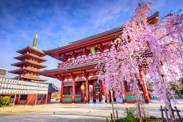 Foto auf AluDibond Tokio Sensoji Temple in Asakusa, Tokyo, Japan