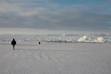 Eisfjord auf Spitzbergen