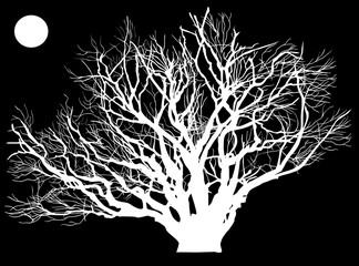 huge white tree on black background