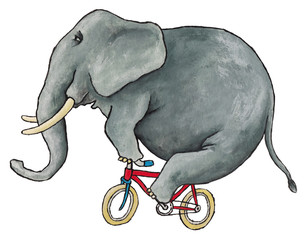 Illustration made with acrylic of an elephant riding a bicycle