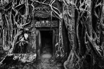 Fotomurales - Ancient stone door and tree roots, Angkor temple