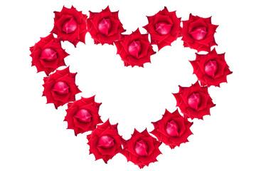 red rose flower of heart