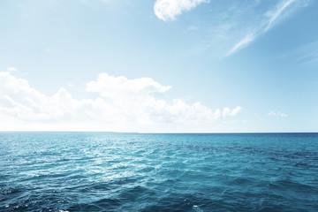 Wall Mural - caribbean sea and perfect sky