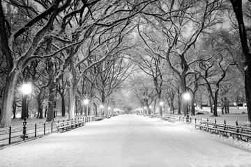 Canvas Prints New York City Central Park, NY covered in snow at dawn