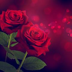rote Rosen zum Valentinstag
