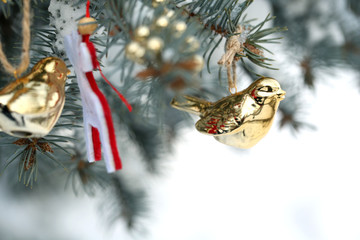 Covered with snow and Christmas decoration branch of spruce,