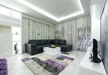contemporary living room interior