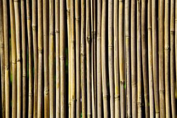 Ein Sichtschutz aus dünnen, nicht sehr geraden Bambusstäben