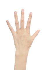 Counting woman hands five.