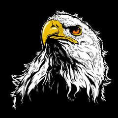 White Eagle Head