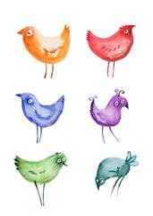 Birds. Watercolor. Hand drawing.