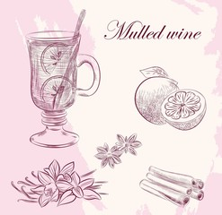 mulled wine. vector sketches