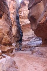 Вдоль по розово-красному каньону