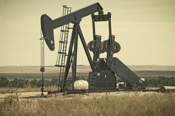 Pump Jack Lifting Crude Oil