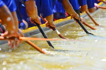 Wall Mural - teamwork of rowing team