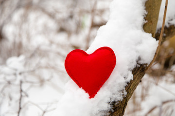 textile red heart on snowy tree branch in winter