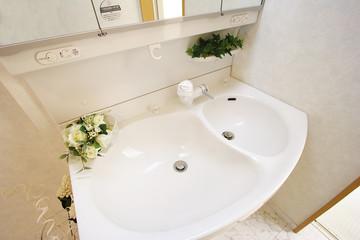 住まいの洗面化粧台(ボウルが2つのタイプ)
