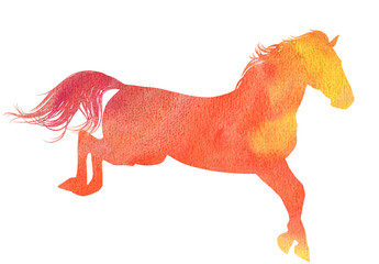 Watercolor horse silhouette