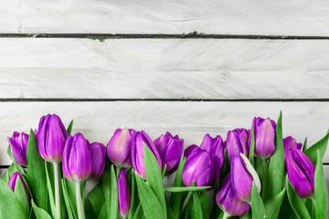 Tulip flowers on wood background