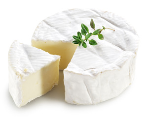 Wall Mural - Camembert cheese.