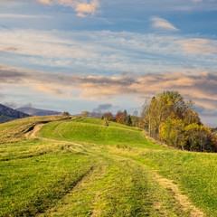 path on hillside meadow in mountain