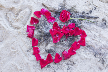 Rose petals on the sand make a heart