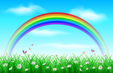 Grass background with rainbow