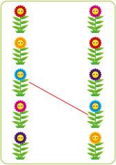 Flower - find pair