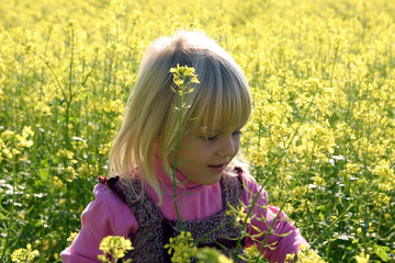 Kleines Mädchen im Rapsfeld