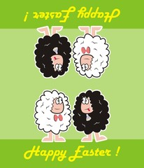 happy easter, sheep
