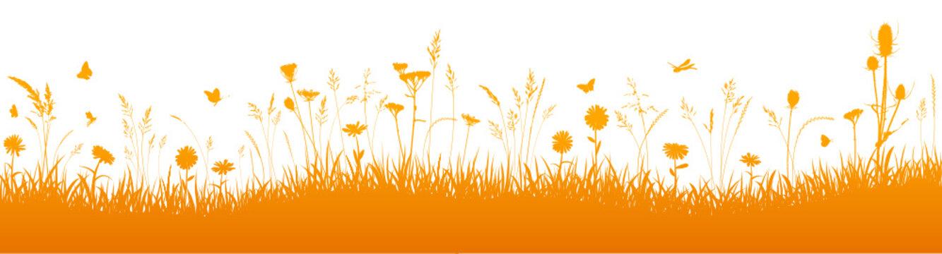 Herbstwiese Hintergrund