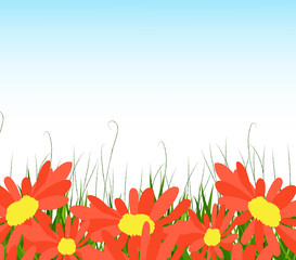 background with sunflowers, green grass