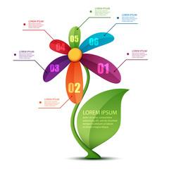 flower infographic