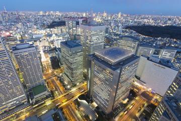[東京都市風景]超広角で望む トワイライトの摩天楼新宿高層ビル街と東京全景 東京タワー 東京スカイツリーも望む