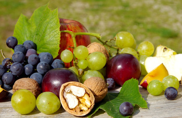 Diverse natural autumn fruits