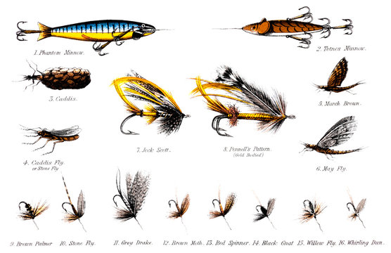 19th century illustration of some salmon and trout flies
