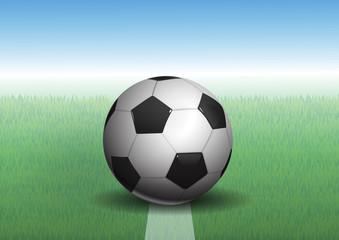 soccer ball on grass, vector illustration