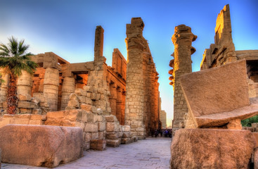 Printed roller blinds Egypt View of the Great Hypostyle Hall in at Karnak - Egypt