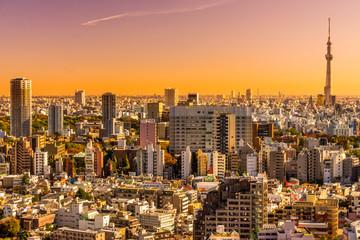 Keuken foto achterwand Tokyo Tokyo skyline, Japan.
