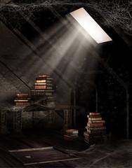 Obraz Stary strych z książkami i pajęczynami - fototapety do salonu