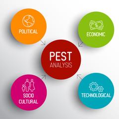 Vector PEST diagram schema