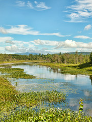 The Adirondack State Park