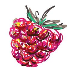 The Art Raspberry. Funny sketch of Raspberry