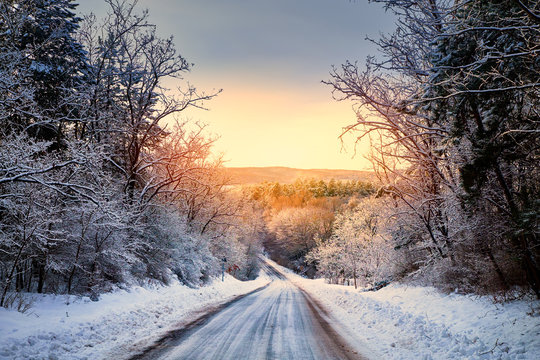 Winter road in forest